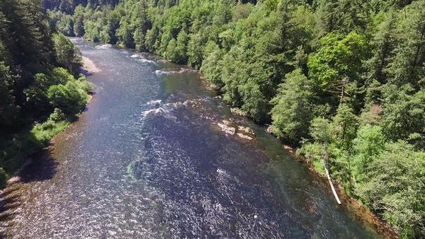 Image The McKenzie River